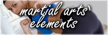Martial arts' elements