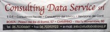 Consulting Data Service